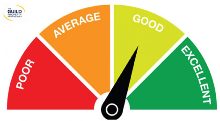 A Guide to Understanding Credit Scores